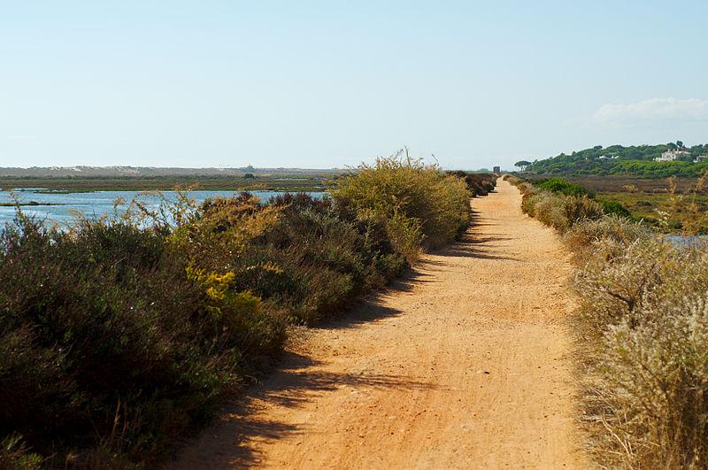 An-der-Ria-Formosa-Algarve