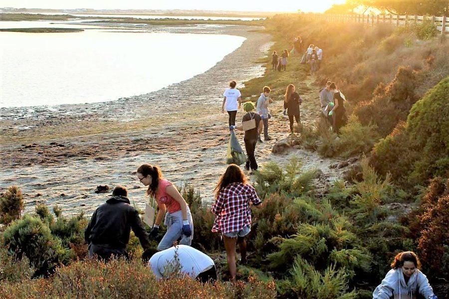 Algarve-News Studenten reinigen Ria Formosa