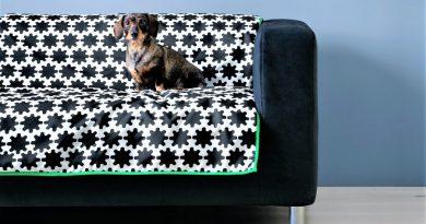 Haustiere bekommen bei IKEA an der Algarve eigene Wohnmöbel