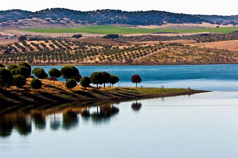 Alentejo-Weine gedeihen in einer hügeligen Landschaft nördlich der Algarve
