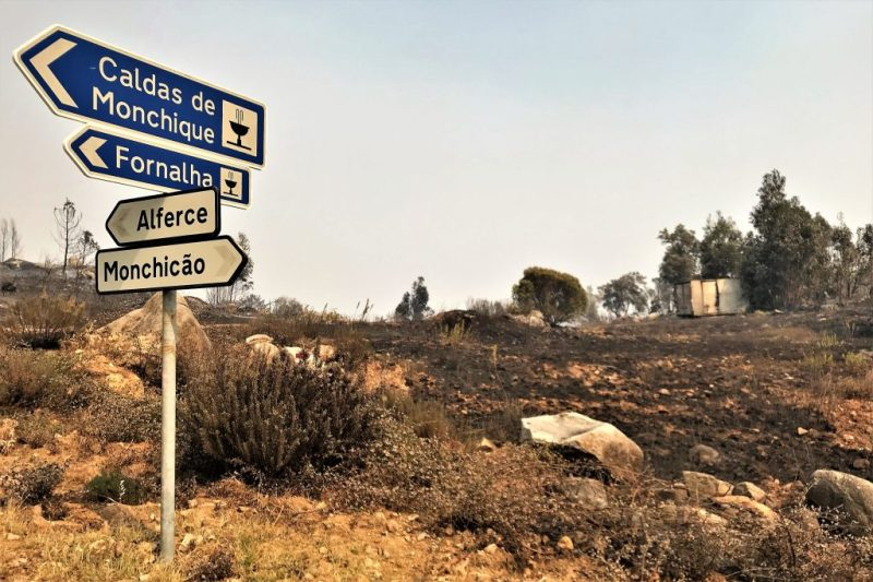 Algarve-Feuer hat viel Vegetation im Gebiet Monchique vernichtet