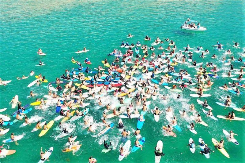 Algarve News zu Naturschutz-Aktion von Surfern an der Algarve bei Sagres