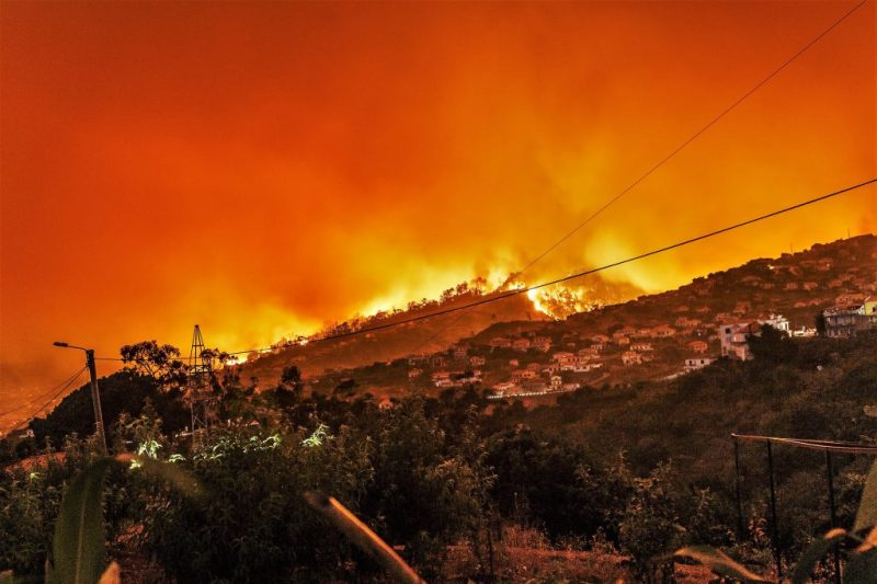 Algarve News über Umzug von Uschi Obermaier aus Kalifornien an die Algarve