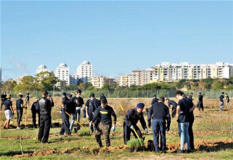 Algarve News über Baumpflanzaktion nach Waldbränden