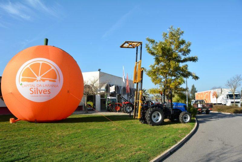 Algarve News zur Orangenproduktion für Lebensmittelkette Continente