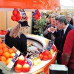 Orangen-Festival begeistert Algarve-Touristen