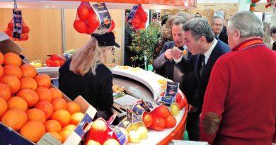 Orangen-Festival in Silves zeizt zum Genießen saftig-süßer Zitrusfrüchte