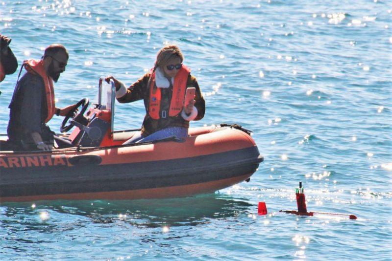 Algarve News zu Meeresforschung von Marine und Universität