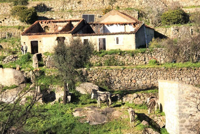 Waldbrand-Region Monchique hat Schwierigkeiten mit dem Wiederaufbau abgebrannter Häuser