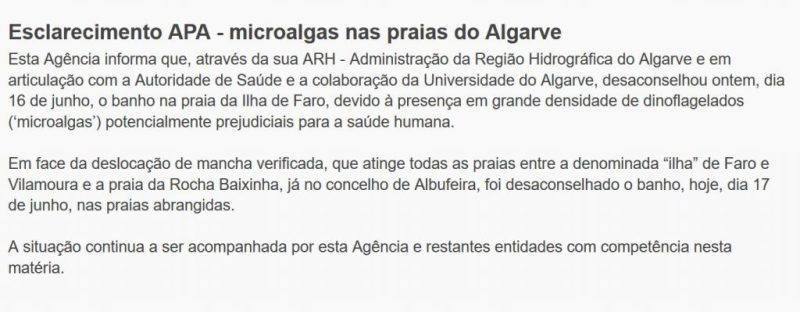 Mikroalgen lassen Umweltagentur APA Badeverbot für Algarve-Strandabschnitte verhängen