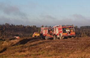 Algarve News zu Schadensbilanz des Waldbrands bei Aljezur