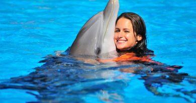 Delfinshows mit Körperkontakt bei Zoomarine an der Algarve in der Kritik