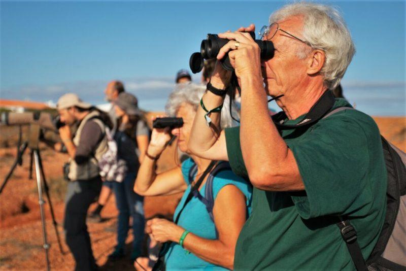 Vogelbeobachtung an der Algarve mit Naturfreunden aus 36 Ländern