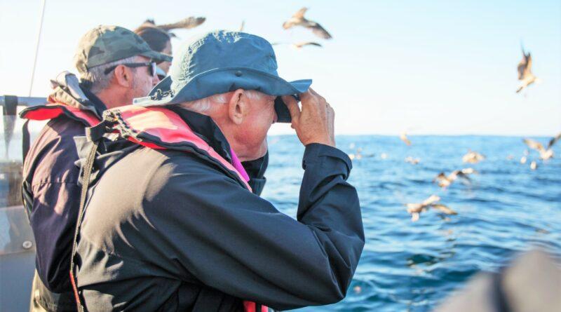 Vogelbeobachtung im Atlantik vor der Algarve-Küste in Sagres